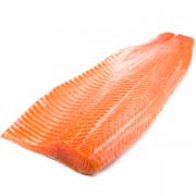 semga-losos-atlanticheskij-600×600
